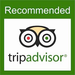 Tripadvisor Shelter Hostels Amsterdam